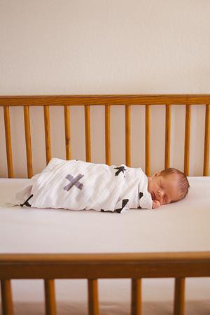 Bassett Newborns
