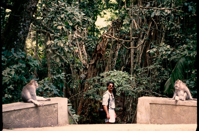 Monkey Forest Rd., Ubud, Bali