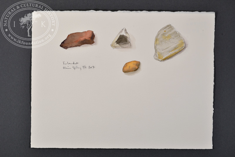 "Rock samples, Forlandet, Svalbard | 9.9.2017 |  ""I want to convey what I see with immediacy and simplicity to make the viewer feel present on the Arctic scene."" 