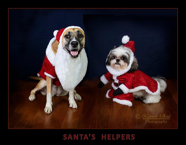 Santas Helpers sm.jpg
