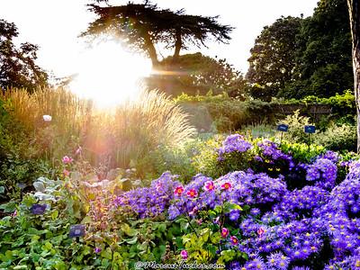 September 2012 - Kew Gardens