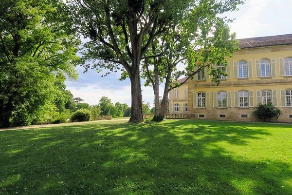 Stuttgart - Schloss Hohenheim - Park