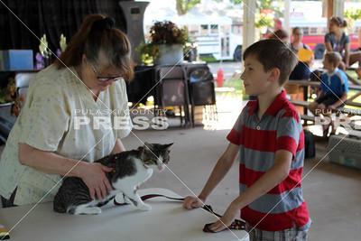 4-H Cat Show