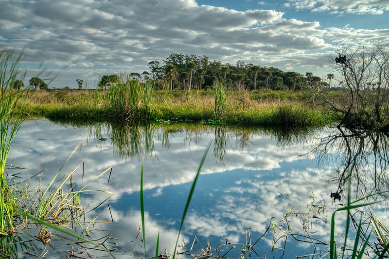 Florida Prairie 2020-7.jpg