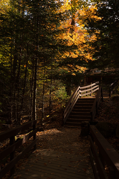 New England Fall-20-Edit-Edit.jpg