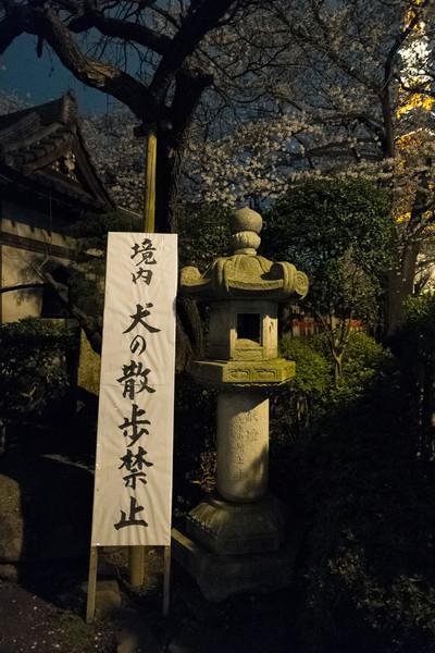 Tokyo Day 1 (18 of 40).jpg