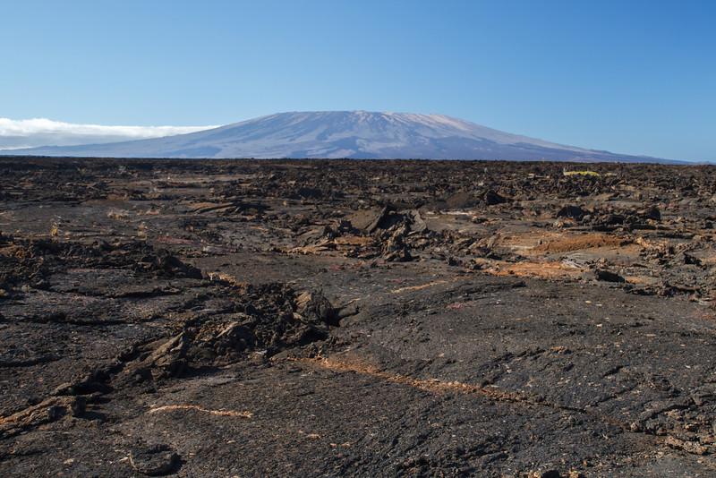 Lave Fields at Punta Moreno, Galapagos, Ecuador (11-23-2011) - 679.jpg