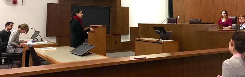 Expert Witness Testimony