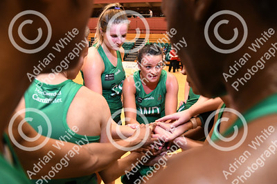 The Celtic Dragons