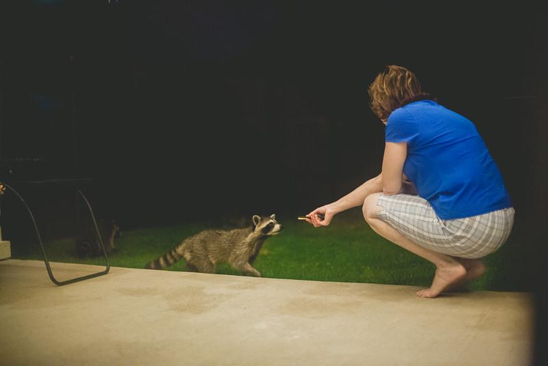 20140809-birthday-raccoons-3.jpg