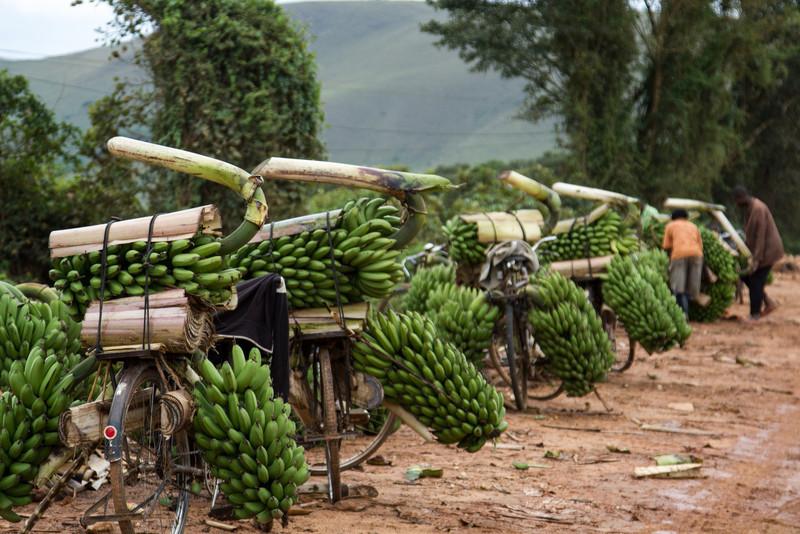 Uganda_GNorton_03-2013-418-2.jpg