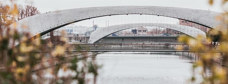 Puentes Cáscara