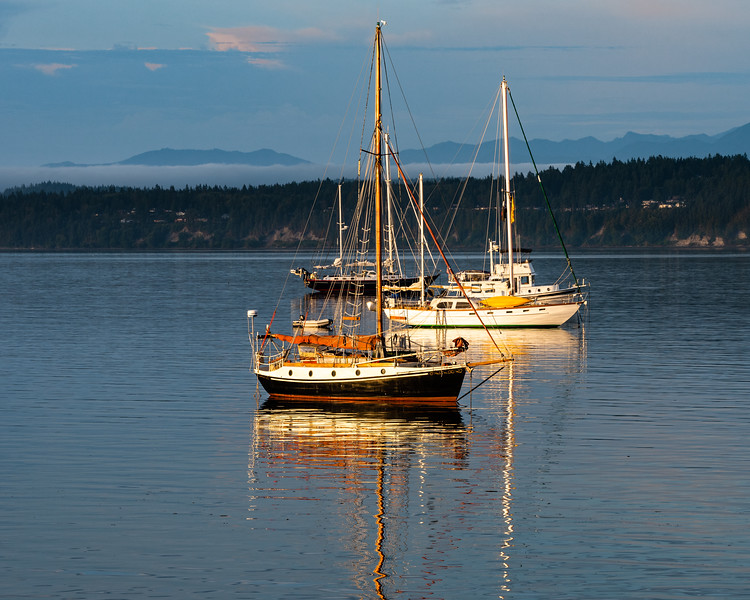 Sailboats at dawn, Port Townsend, Washington