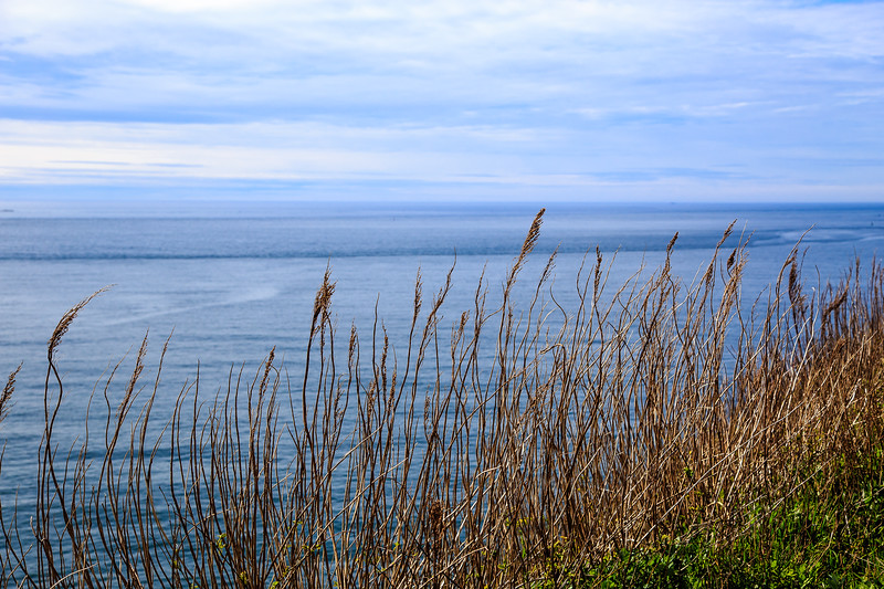Cape Disappointment-1114.jpg