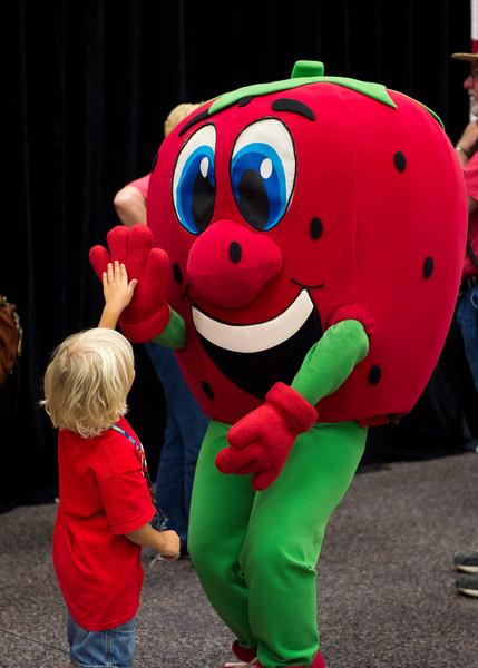 Strawberry Festival_2015_315.jpg