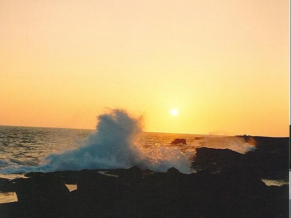 Hawaii-397.jpg