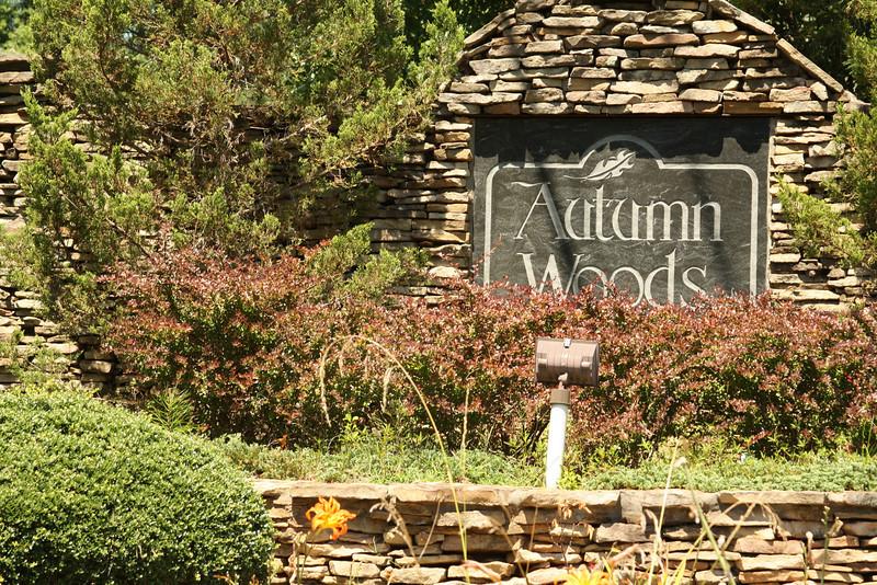 Autumn Woods Canton (3).JPG