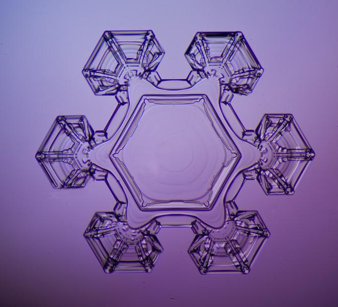 snowflake-0260-Edit.jpg