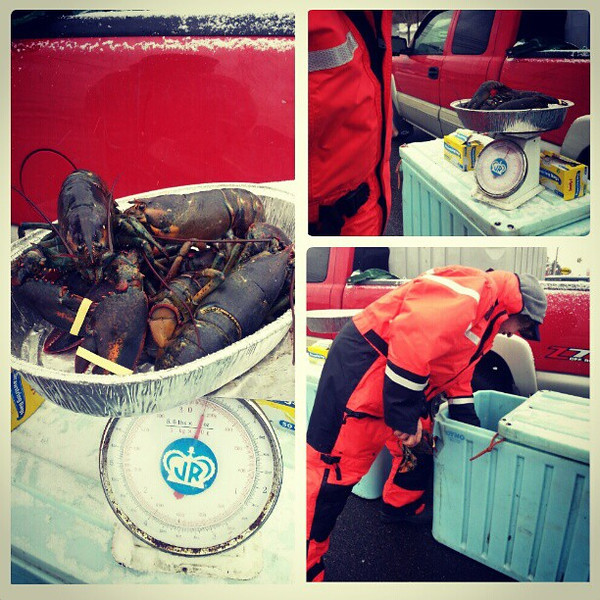 It_wouldn_t_be_a_proper_Christmas_Eve_without_buying_lobster_on_the_side_of_the_road_direct_from_the_fisherman..jpg