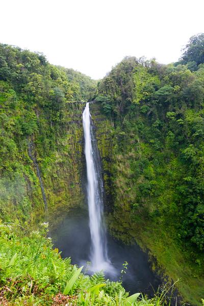 Hawaii_Hilo_849.JPG