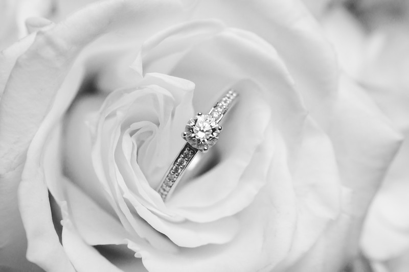 Diamond engagement ring inside a rose.