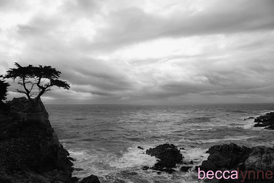 october 12. 2007 pebble beach and other places, too