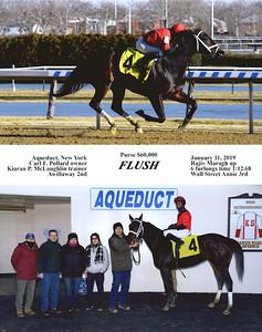 FLUSH - 1/11/2019