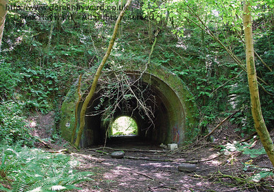The former line from Barcombe to Sheffield Park via Cinder Hill Tunnel (now closed)