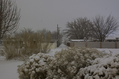 Socorro Snow Fall 2011
