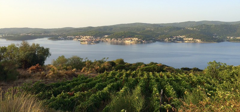 Running around Orebic: wineries, sun, and sea