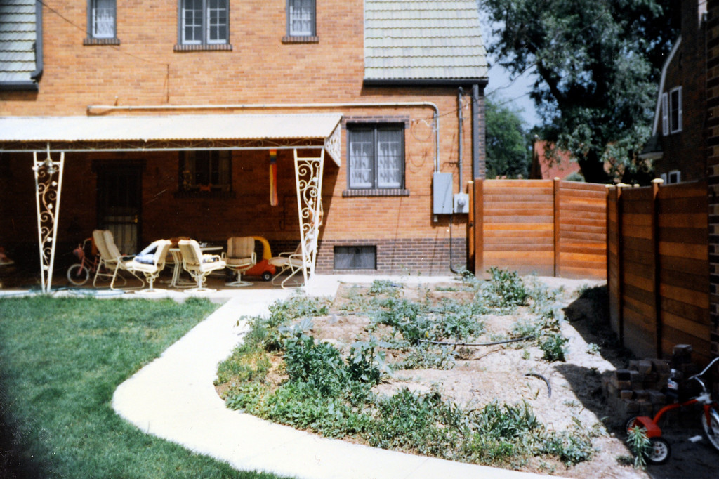 . Before any of the ponds were built, the backyard of the Peters-Combs\' house was a typical lawn. A tornado blew down two large spruces before the first of the ponds was built about a decade ago. (Courtesy of Becky Peters-Combs)