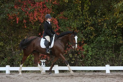 Dressage Ring 1 Afternoon-