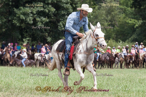 MULE RACE National Championship Chuckwagon Races