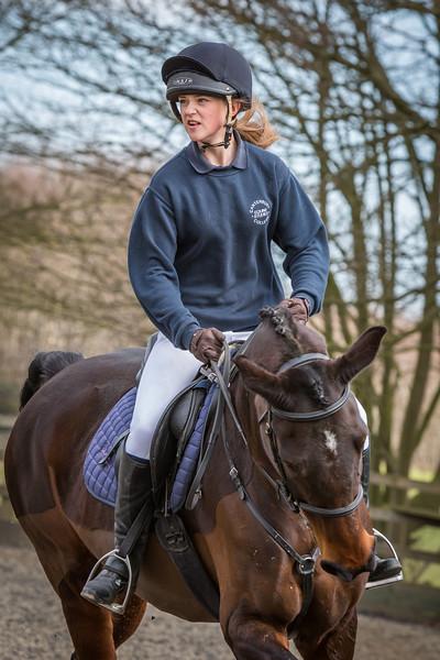 Horse portfolio shots
