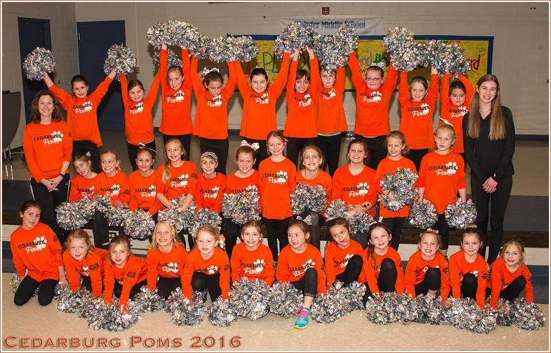 160310_0067 HiREz 17x27in Group shot-Cedarburg Poms with hands up.jpg