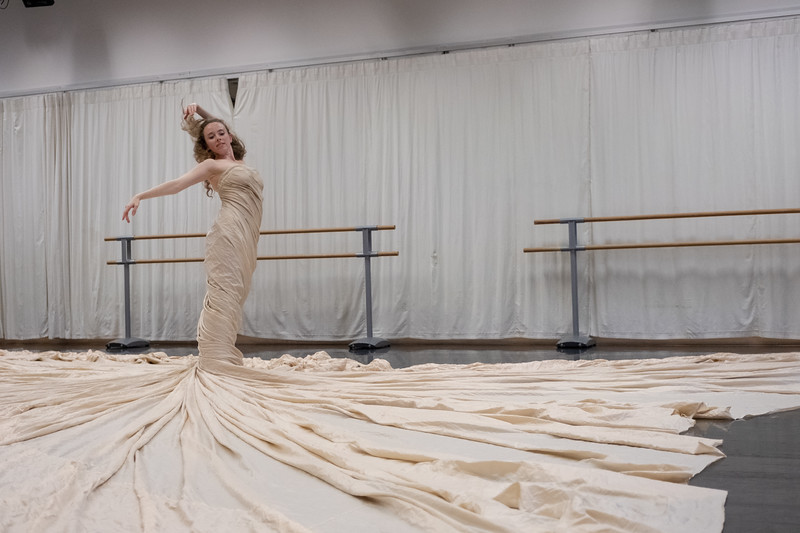 "Showing: Amy Swanson - ""'La Robe' ('Dress dance')"""