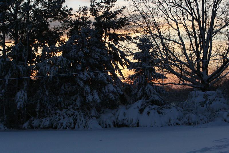snow 2010 feb IMG_2387 (12).JPG
