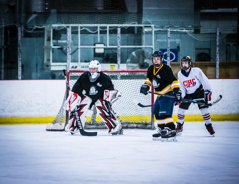 Bruins2-196.jpg