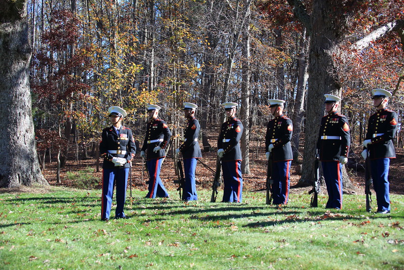 Marines prepare to render honors during Veteran's Day ceremony at Quantico National Cemetery.
