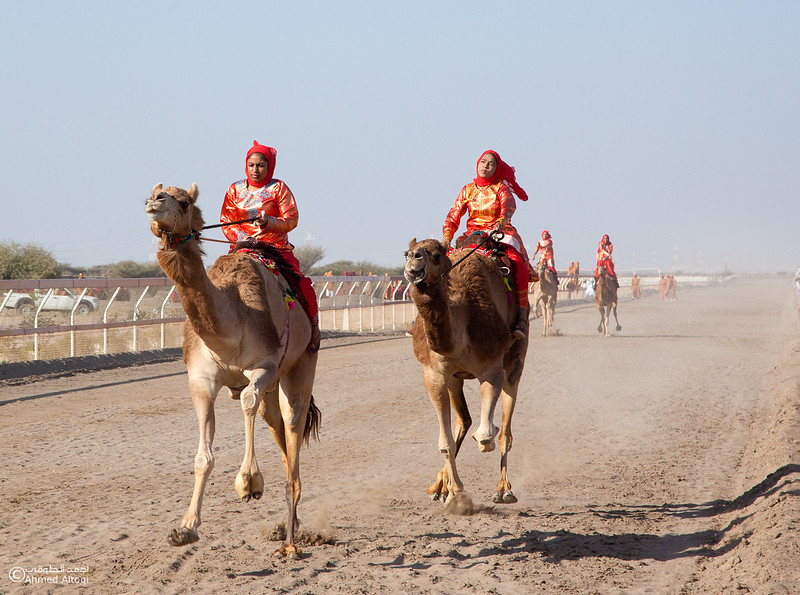 Camel Race  (69).jpg