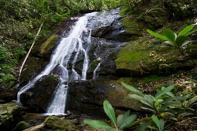 Hike to Buzzard Mountain Branch Falls