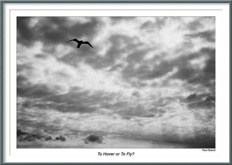 PRT10159-FrameShop.jpg