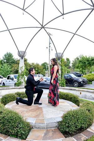 Brittany & Laszlo (Proposal)