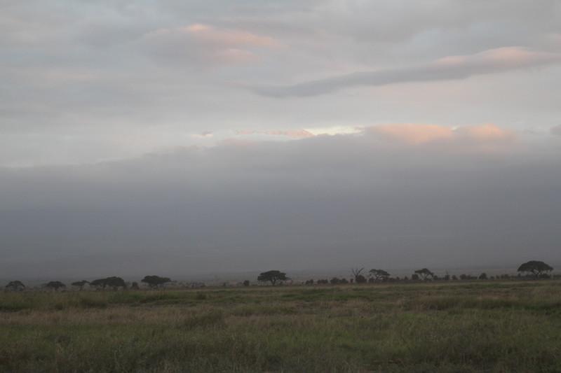 Kenya 2019 #2 1641.JPG