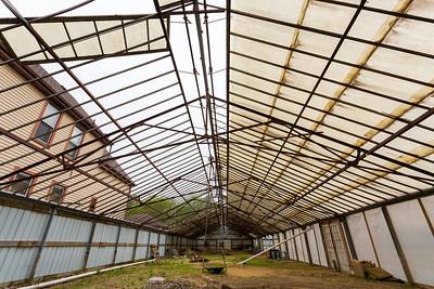 Convivium Urban Farmstead
