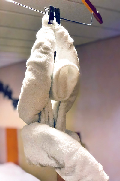 2018_Cruise_Ship_Towel2.jpg