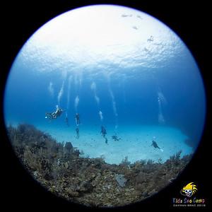Cayman Brac 2018  Brac Reef Beach Resort