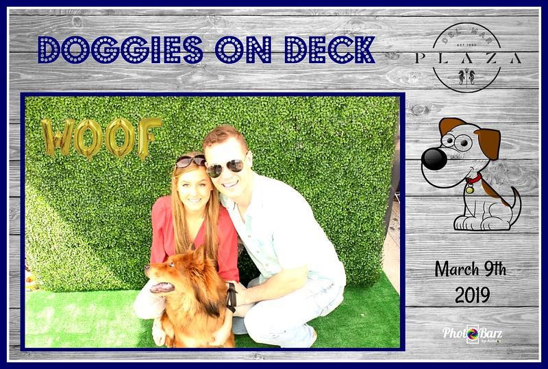 Doggys on Deck20.jpg