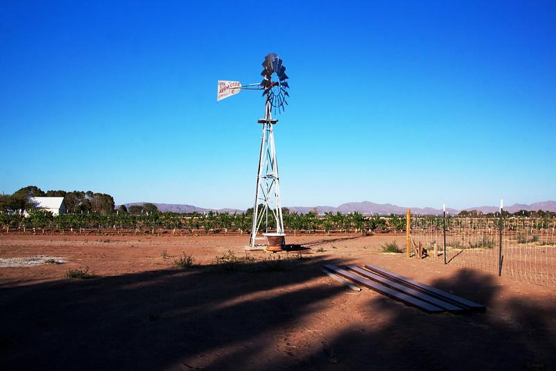 IMG_5581 windmill 3.jpg