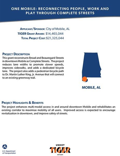 TIGER_Fact_Sheets_-_7-28_Page_05.jpg